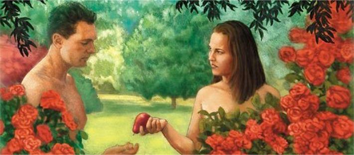 Adam Eve