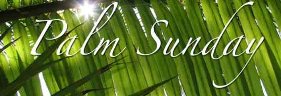 Palm-Sunday-Banner