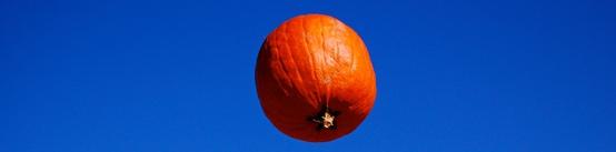 pumpkin-chunkin